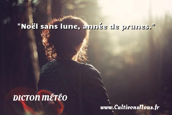 107008-noel-sans-lune-annee-de-prunes1